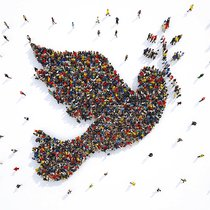 Picture of the dove of peace comprised of people